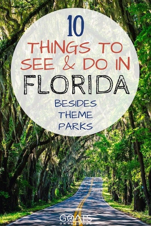 Tree lined road with text overlay 10 things to see and do in Florida besides theme parks