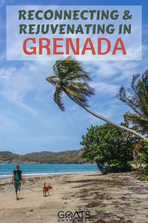 Walking on Grenada Beach with a dog with text overlay Reconnecting & Rejuvenating in Grenada