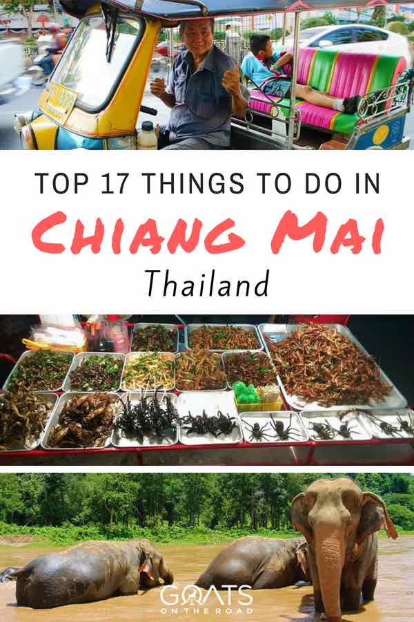 Popular tourist attractions in Thailand with text overlay things to do in Chiang Mai