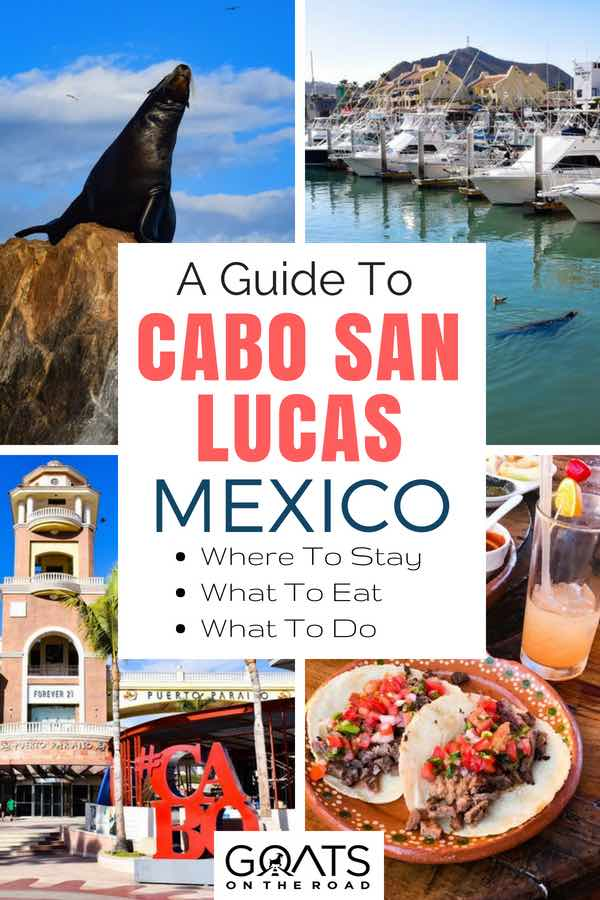 Popular attractions in Mexico with text overlay A Guide To Cabo San Lucas