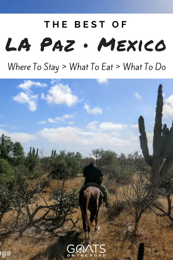Horseriding in Mexico with text overlay The of La Paz