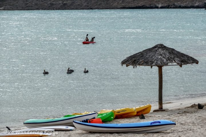 Kayaking in Balandra Beach, things to do in La Paz, Mexico