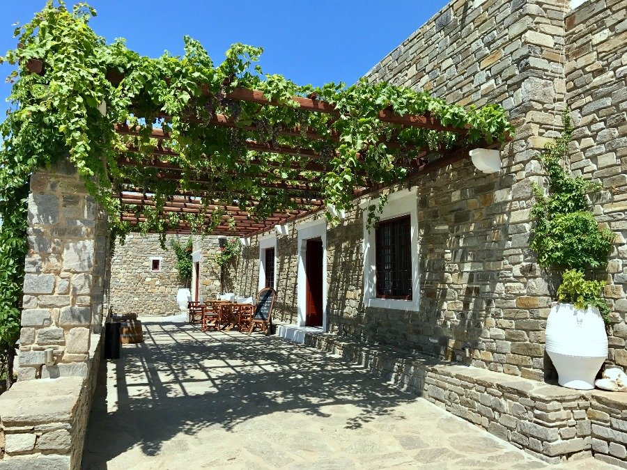 visiting a winery is one of the top things to do in paros
