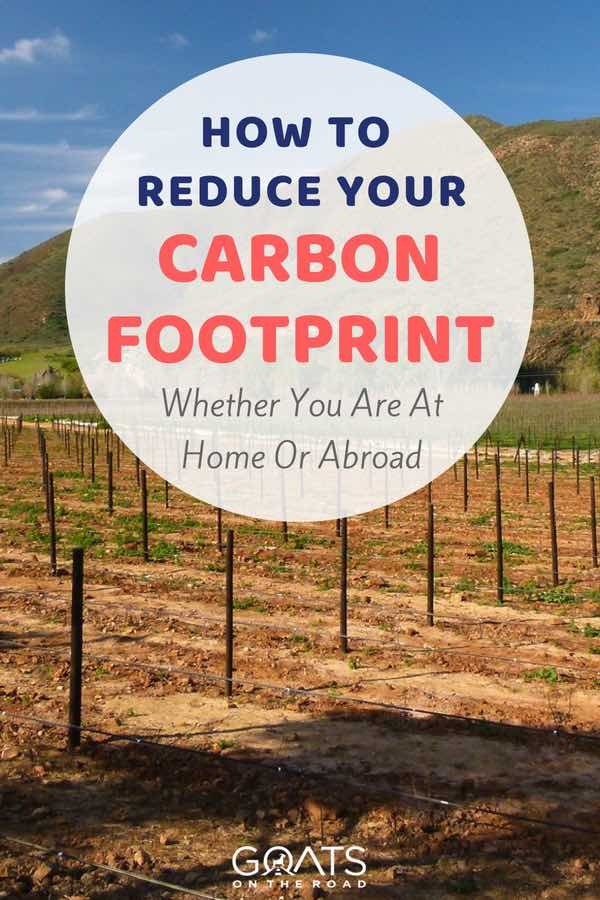 Crops in field with text overlay How To Reduce Your Carbon Footprint