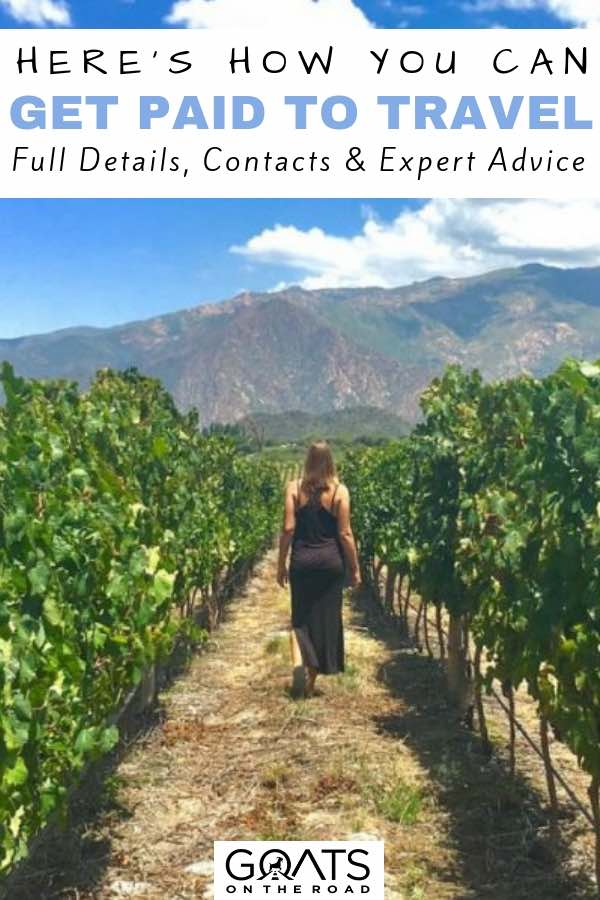 Working on a vineyard with text overlay Here's How You Can Get Paid To Travel