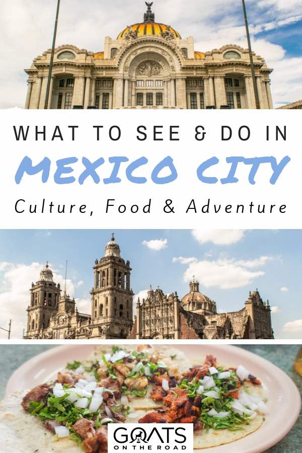 Popular sights with text overlay What To See & Do In Mexico City