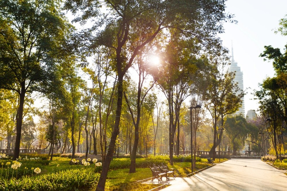 alameda park things to do in mexico city