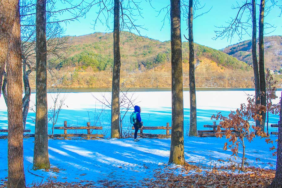 Nami Island in Winter is one of the best places to visit in seoul