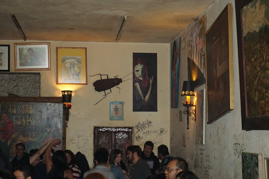 drinks at the cockroach dive bar is one of the best things to do in san miguel de allende