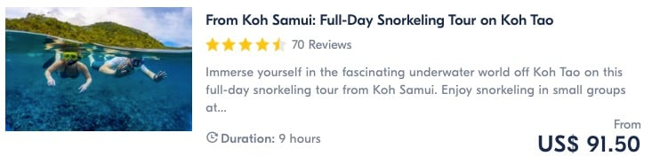 best things to do in koh tao snorkelling tour