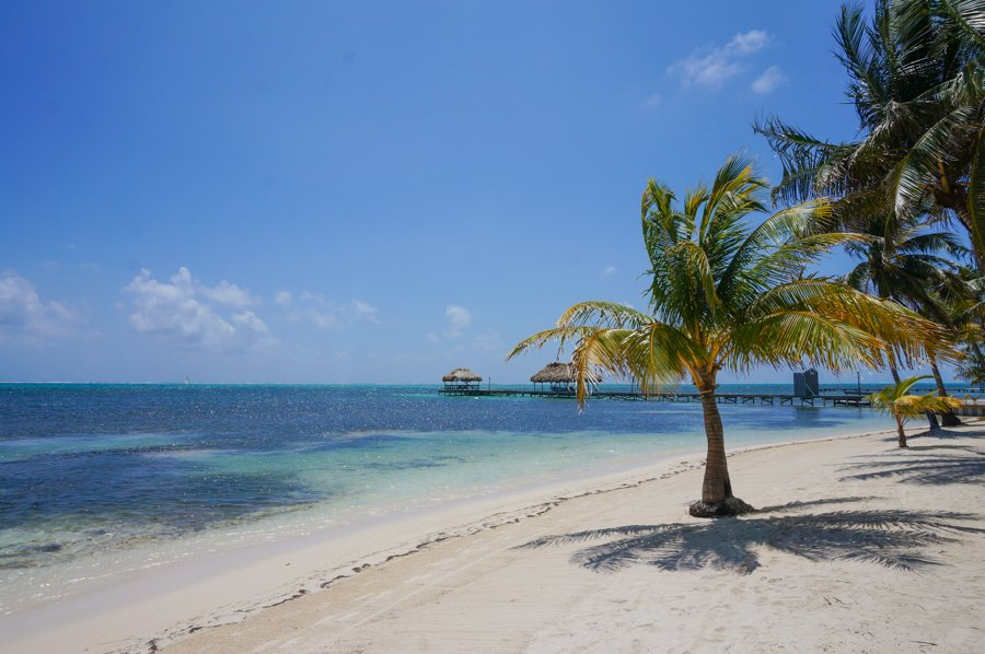ambergris caye is one of the best beaches in the caribbean