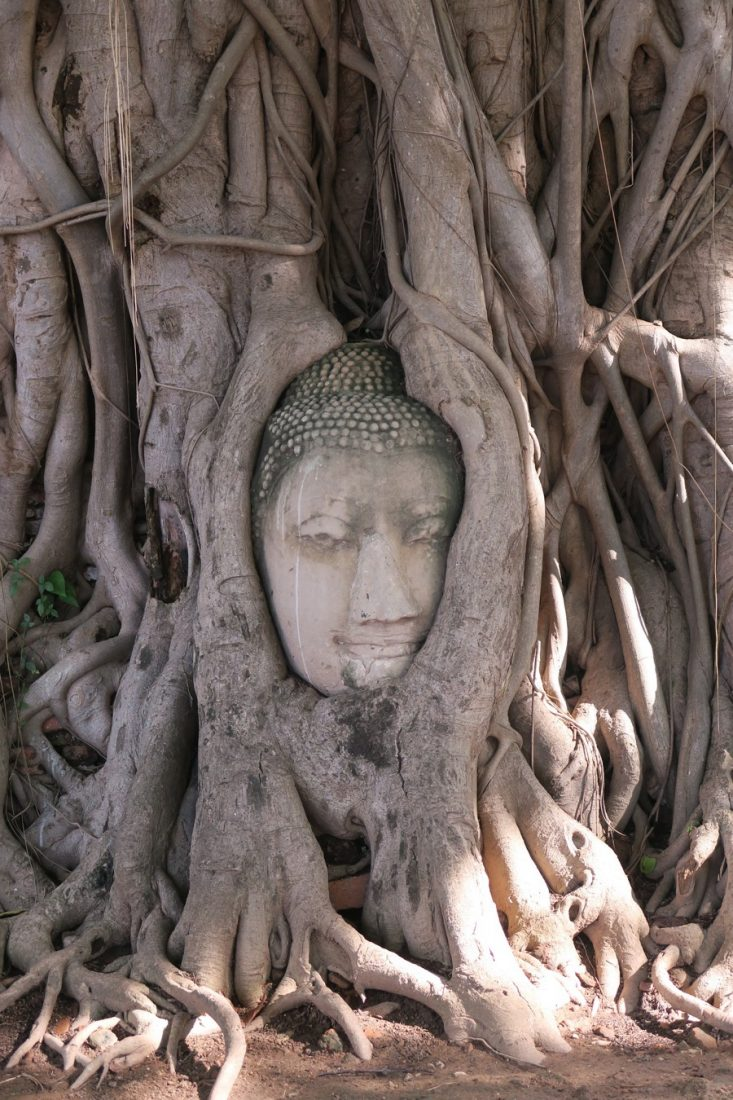ayutthaya historical park temples to visit