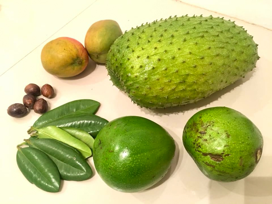 fruit in grenada