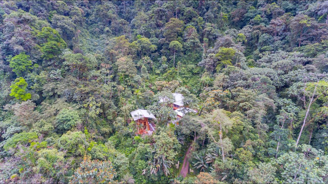 airbnb in mindo ecuador