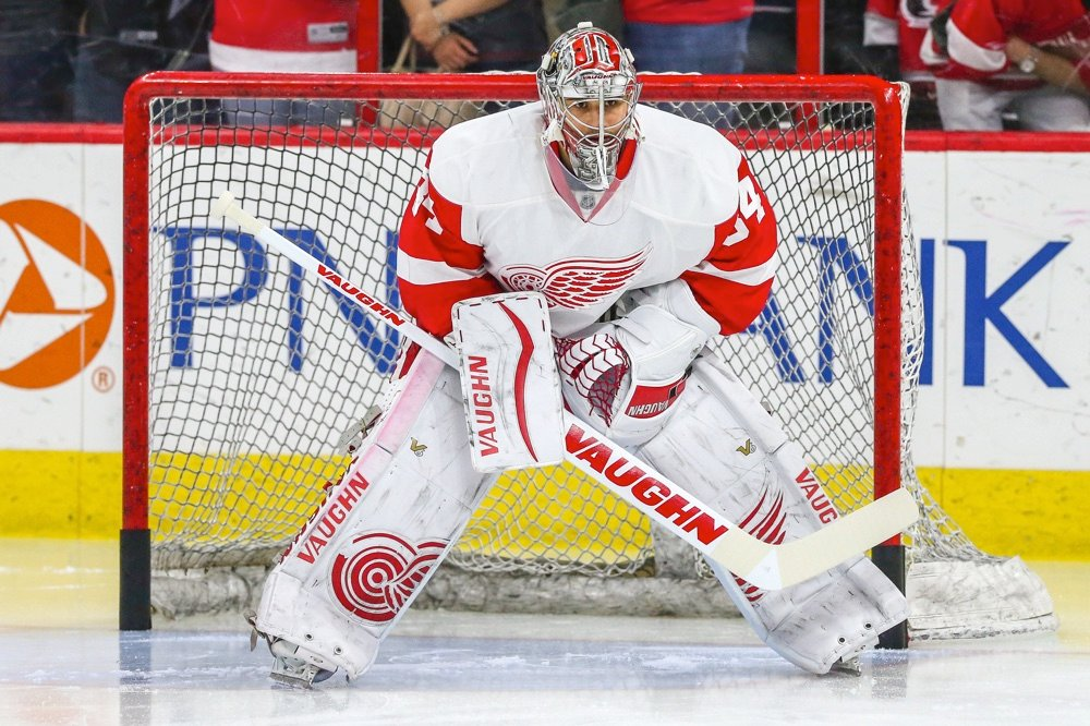detroit redwings things to do