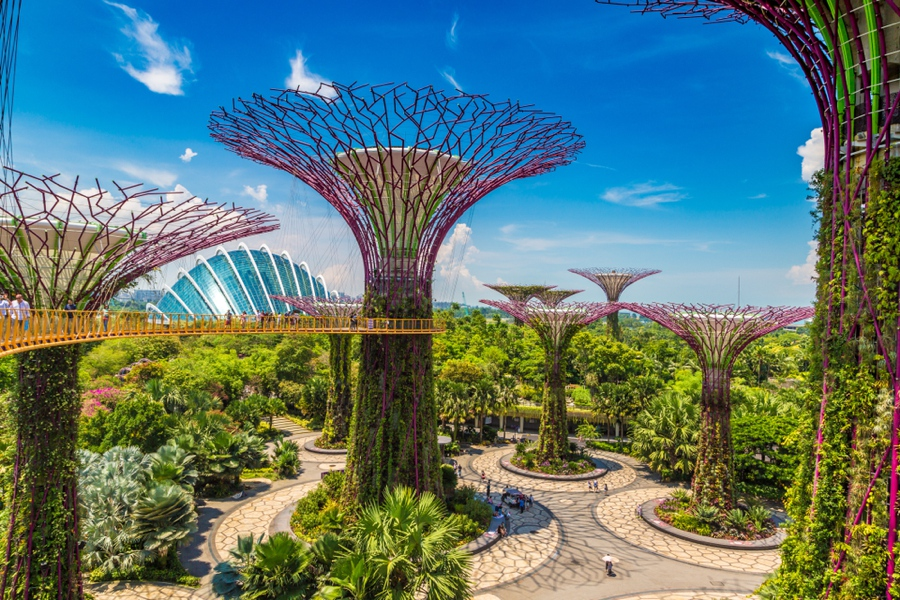 checking out the supertrees is one of the best things to do in singapore