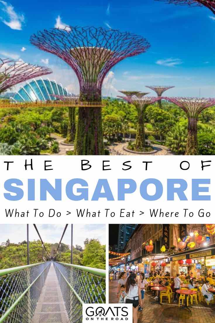 supertrees and treetop walk with text overlay the best of singapore