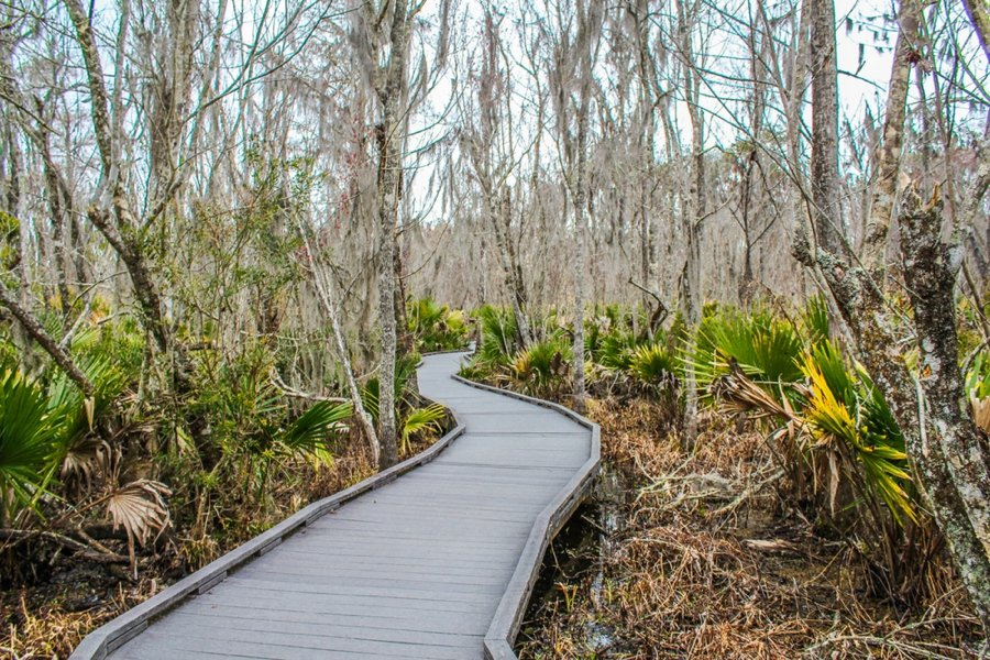 the Jean Lafitte National Historical Park & Preserve is a top new orleans attraction