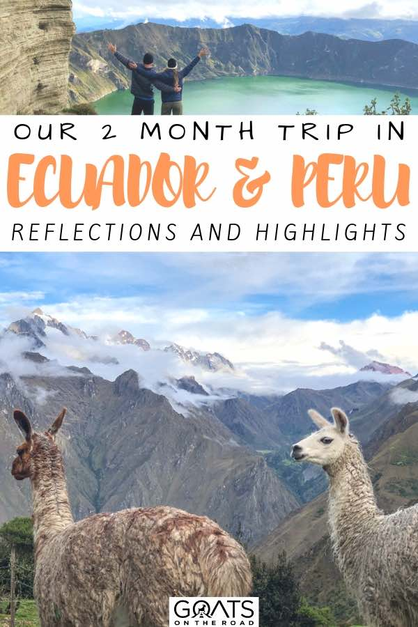 llamas on top of a mountain with text overlay our 2 month trip in ecuador and peru