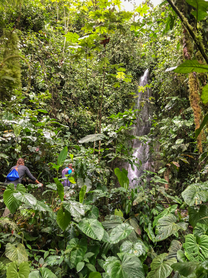 hiking to waterfalls in mindo ecuador