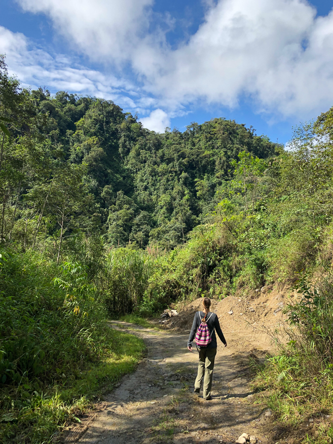 3 day travel guide to mindo cloud forest