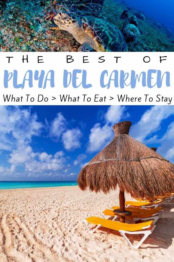 beach umbrella and turtle with text overlay the best of playa del carmen