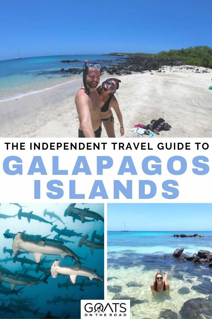 hammerhead sharks and the beach with text overlay the independent travel guide to Galapagos Islands