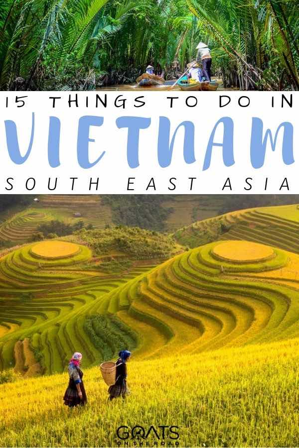 rice paddies with text overlay 15 things to do in vietnam