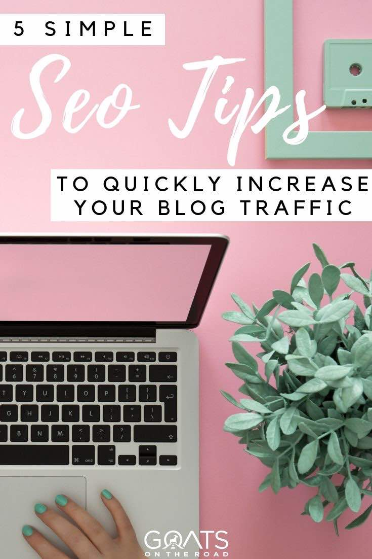 laptop and plant with text overlay SEO tips to drive traffic to your website