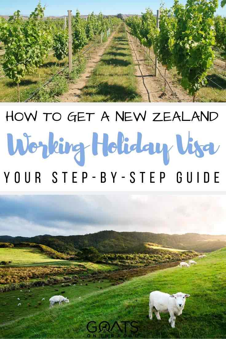 winery with text overlay how to get a New Zealand working holiday visa