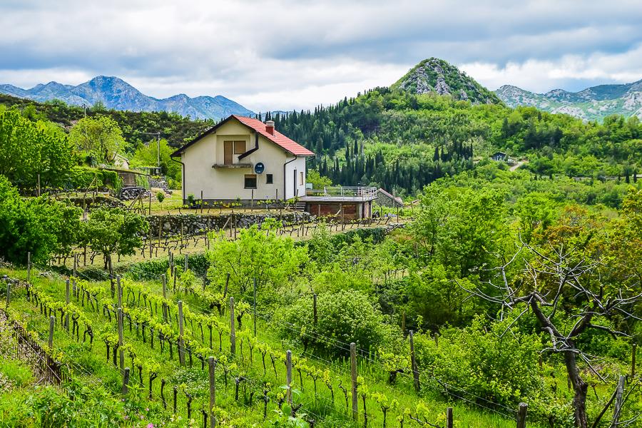 lake skadar workaway montenegro