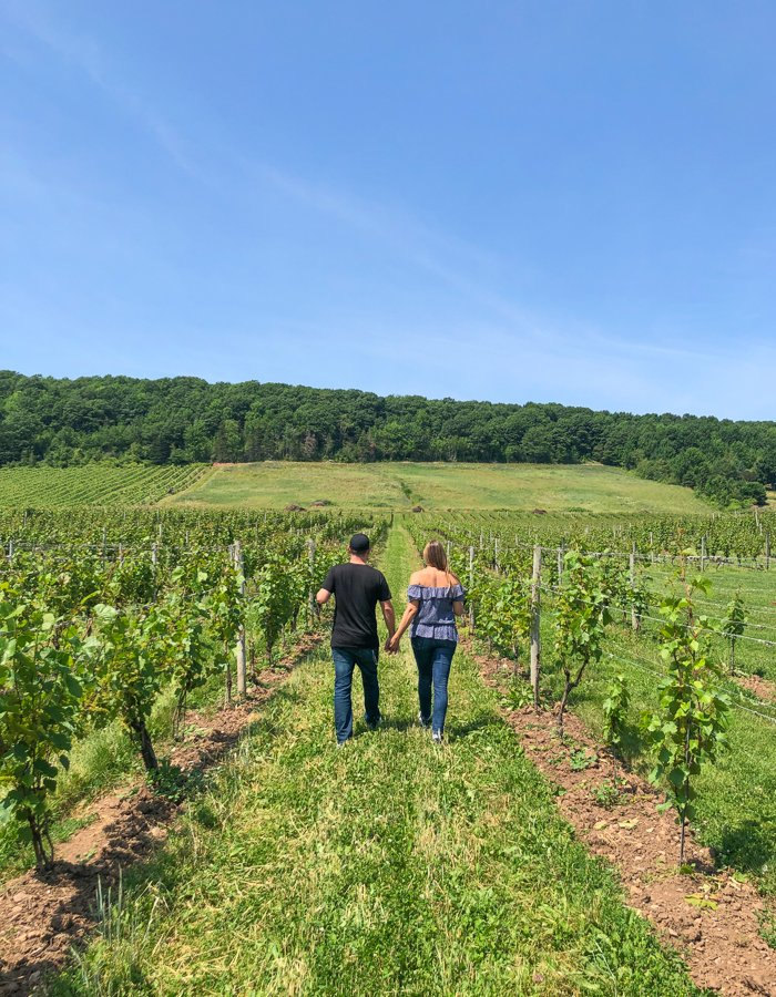 gaspereau vineyards places to visit in nova scotia