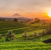 Where To Go in Bali: 15 Best Places To Visit For Travellers
