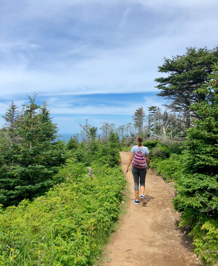 things to do in nova scotia hike the skyline trail