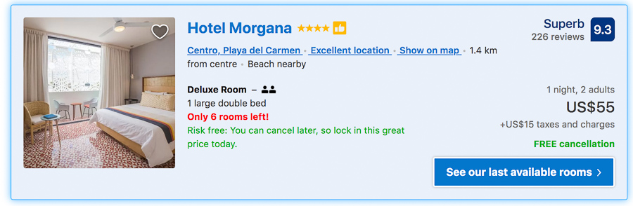 hotels in playa del carmen morgana