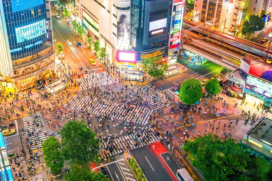 shibuya crossing things to do in japan