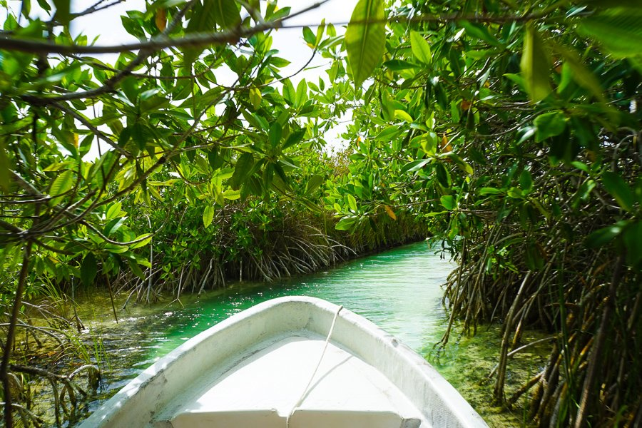 the sian ka'an reserve things to do in cancun