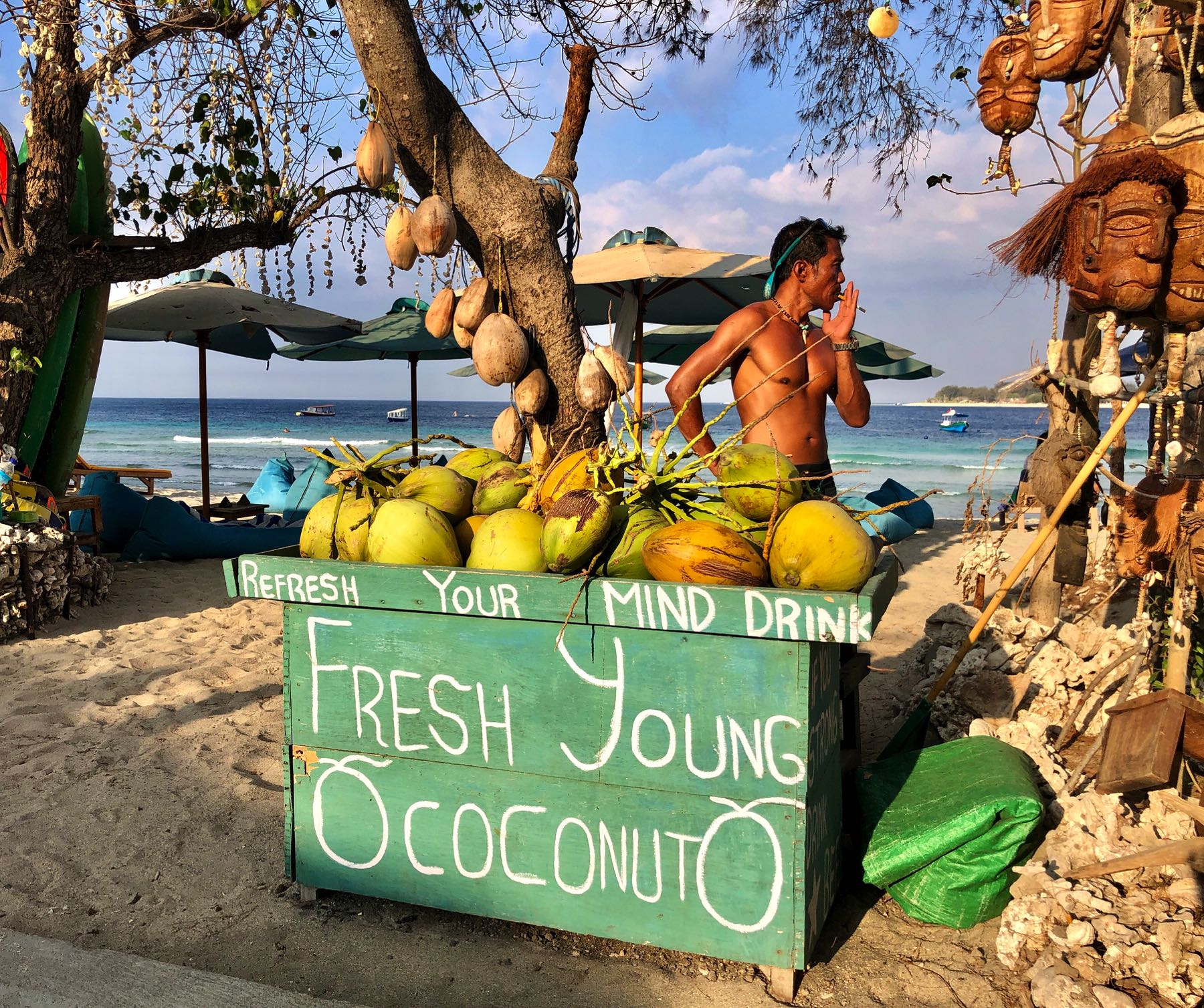 coconuts for sale gili t