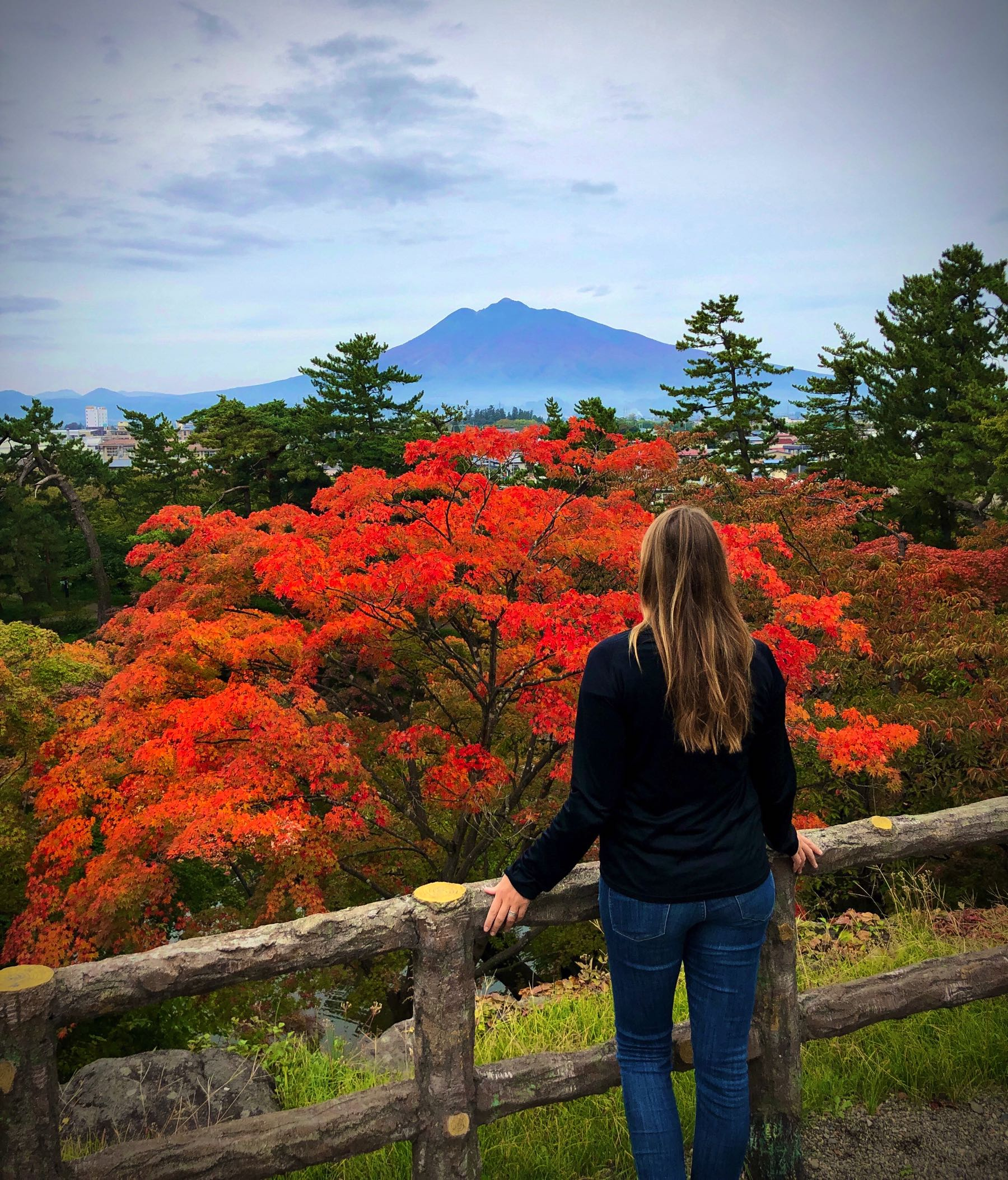 Amazing view of the volcano and autumn colours in Hirosaki Park