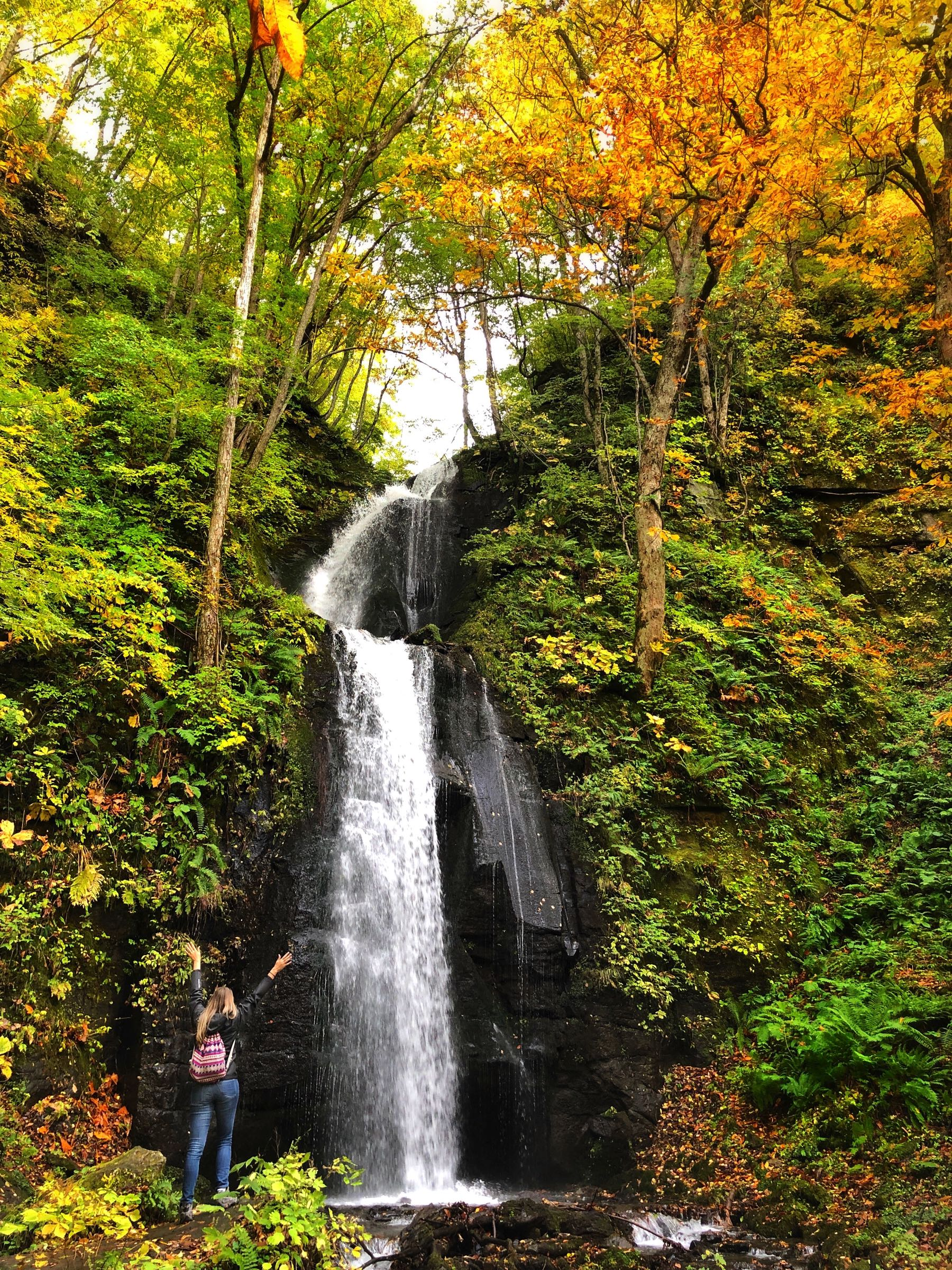 waterfall at oirase in tohoku