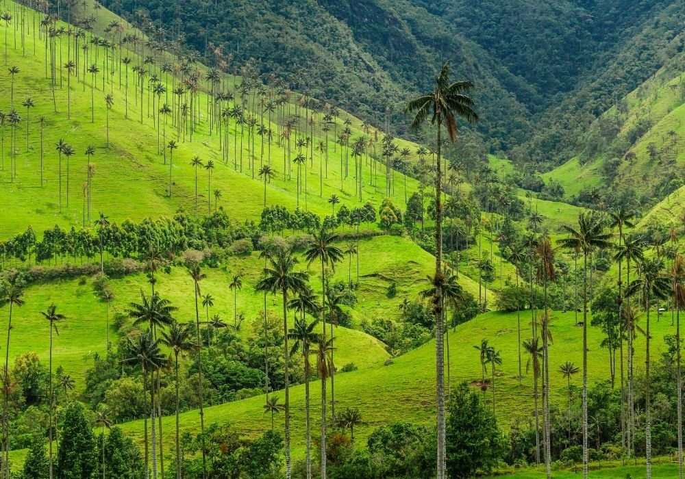places to travel in january colombia