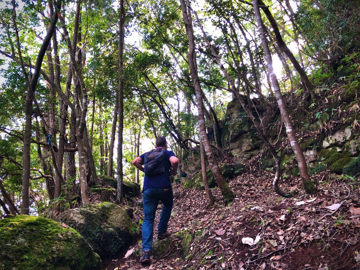 hiking to the naegi castle