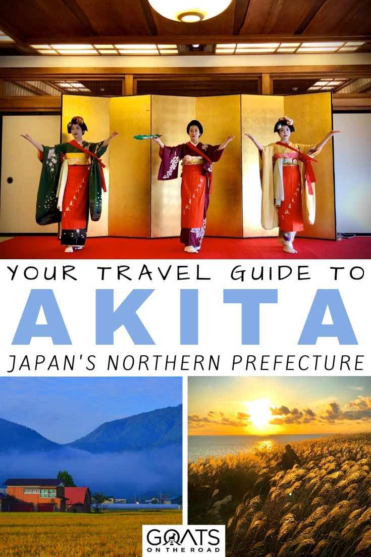 akita with text overlay your travel guide