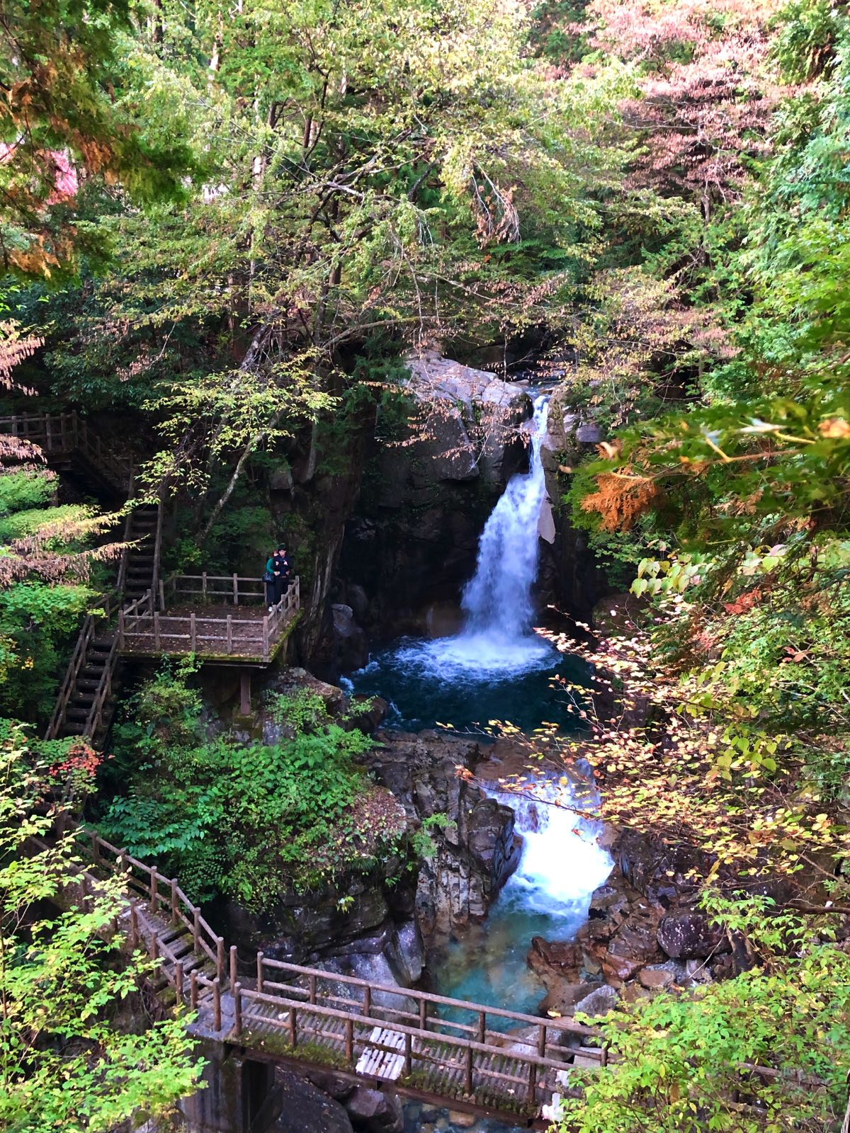 yumori park nakatsugawa