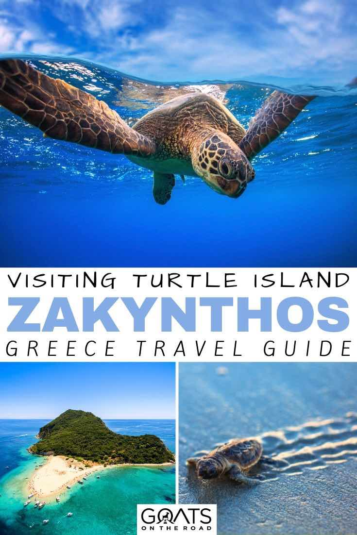turtle with text overlay visiting turtle island zakynthos