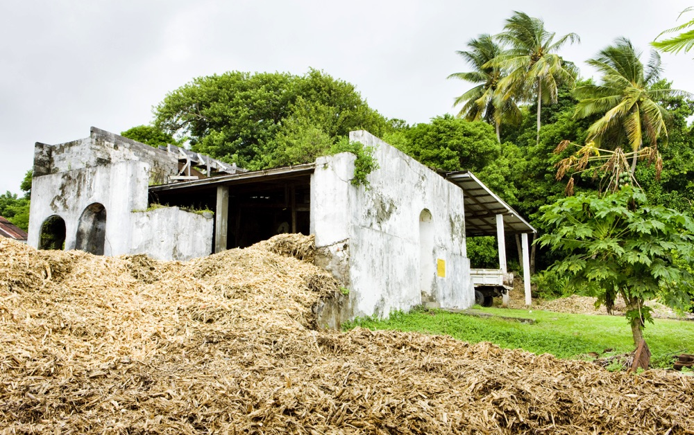 visit a rum distillery in the north of grenada