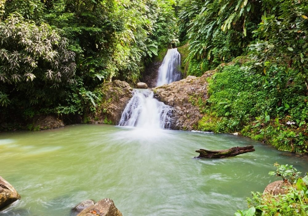 seven sisters waterfalls things to see in grenada