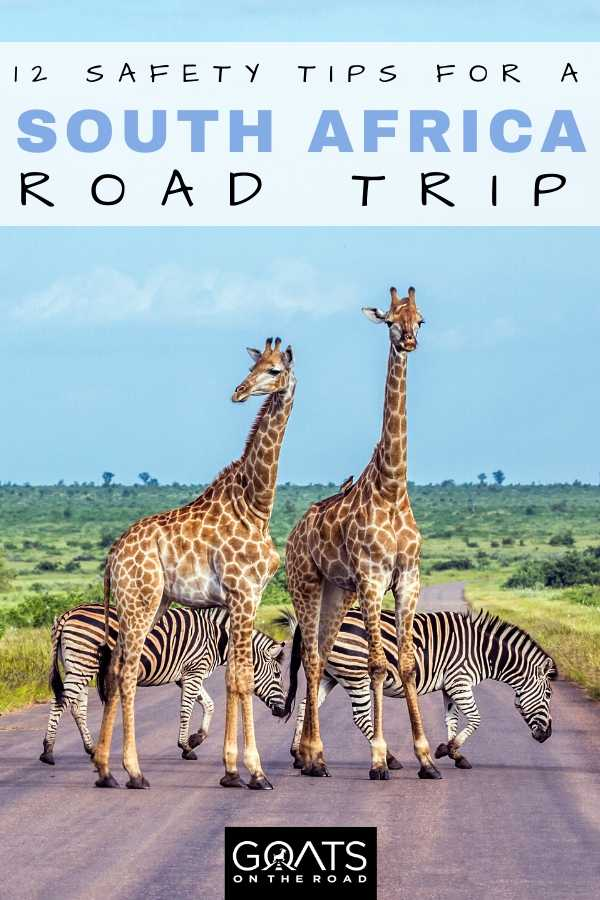 Top Safety Tips For a South African Road Trip
