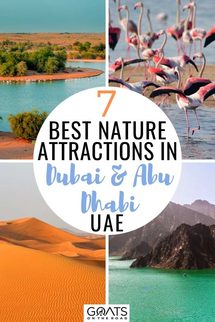 7 Best Nature Attractions in Dubai & Abu Dhabi