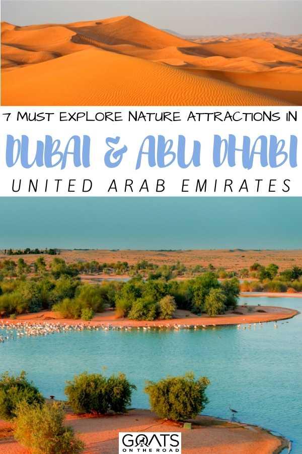 """7 Must Explore Nature Attractions in Dubai & Abu Dhabi"